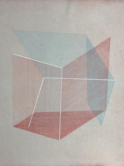 Bronwen Sleigh | Form Follows
